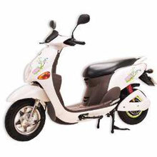 金牌E-COCO電動自行車
