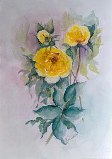 Nr.2637 Gelbe Wildrosen