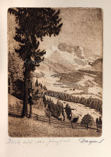 Nr.2562 Blick auf Jungfrau