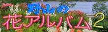 野山の花アルバム2