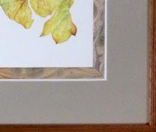 ボタニカル額装例 マーブル紙の装飾