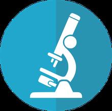 Blog (Unser erstes Experiment)