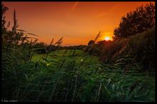 Sonnenuntergang in der Erfder Feldmark (08/2014)