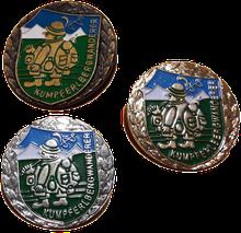 Abzeichen Bronze-Silber-Gold