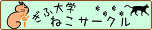 岐阜大学ねこサークル様