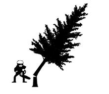 伐採 庭木の伐採 抜根