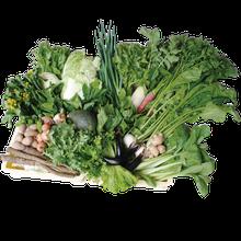 ミモレ農園 お野菜補助食品
