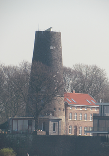 Turm am Rhein