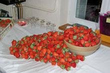 gîtes des barres fraises de Sologne