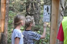 Die Kinder bei der Natur-Rallye