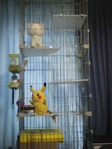 ペットホテル 猫用ゲージ
