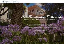 International Website SRF