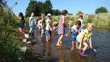 Schüler der 2a gehen auf die spannende Suche nach Wasserinsekten