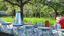 Phantastisch: die Kombination von Vogelstimmenwanderung und Frühstück unter freiem Himmel...!