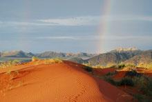 Bunte Welt der Namib