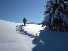 Faire sa trace dans la neige vierge...régal! Own steps in the fresh snow...a real treat!