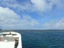 石垣島でのんびりダイビング「梅雨明け宣言」