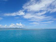 石垣島でのんびりダイビング「真夏の日差し」