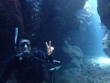 石垣島でのんびりダイビング「探検気分」