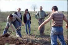 Arbeit am Feuchtgebiet Sondertalsrain