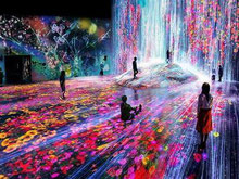 le digital museum teamlab avec un guide francophone japon prive