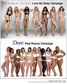 http://xianagf.files.wordpress.com/2012/08/funny-victorias-secret-vs-dove-women.jpeg