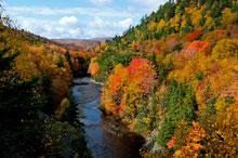 Wandertouren Nova Scotia