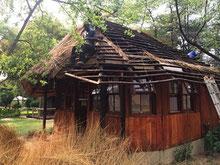 Dachdecker beim Dach neu begrasen