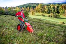 Landschaftspflegeeinsatz auf der Kräuterwiese in Waltershasusen Foto: D. Bernkopf