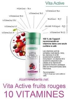 VitaAktiv rien qu'une cuillère à café couvre 100 % de vos besoins quotidien avec 10 vitamines importantes. Un concentré généreux de 21 fruits et légumes d'origine BIOlogique.
