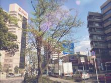 千葉市理容室Barber-salon-Reva近く写真