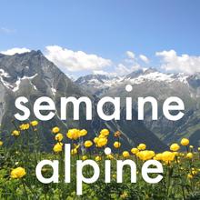 trek cnv dans les forêts du jura suisse - trekking et communication nonviolente