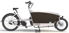 Urban Arrow Family e-Bike 2020