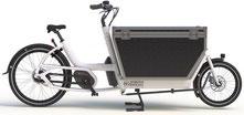 Urban Arrow Cargo e-Bike 2020