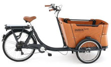 Babboe Curve-E Cargo e-Bike 2020