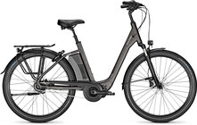 Raleigh Dover Impulse XXL e-Bike 2019