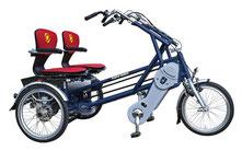 Van Raam Fun2Go Dreirad und Elektro-Dreirad für Erwachsene - Spezial-Dreirad 2020