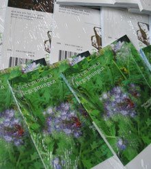 Erinnern und Schreiben im Voralbland 2. Band