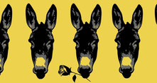 Apulée et L'âne d'or au Festival Latin-Grec 2020