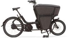 Urban Arrow Shorty - Lasten e-Bike 2019