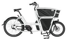 Urban Arrow Shorty - XXL e-Bike - 2019