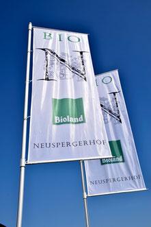 Bioland Weingut Neuspergerhof