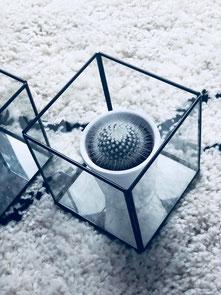 glassbox, cube en verre, déco scandinave, coaching déco Belgique, coaching déco maison