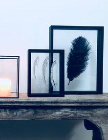 cadre en plume, cadre plumes, déco mur, cadre plume déco, décoration cadre plume