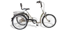 Pfau Tec Comfort Dreirad und Elektro-Dreirad für Erwachsene - Shopping-Dreirad 2020