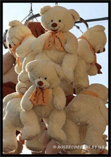 Kuschelbären auf dem hannoverschen Schützenfest warten auf die Adoption