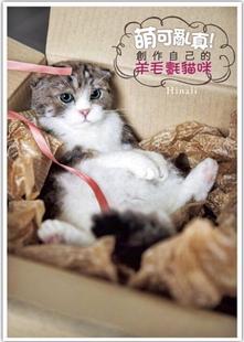 台湾語版  皕可亂真!創作自己的羊毛氈貓 Hinali