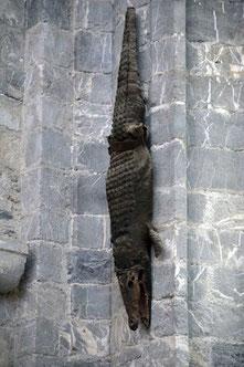 Le crocodile de la cathédrale de Saint Bertand de Comminges, grand site touristique de la région Occitanie Pyrénées Mediterrannée
