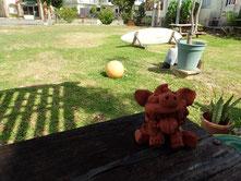石垣島ヒートハートクラブのショップ庭
