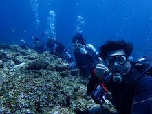 石垣島でのんびりダイビング「マンタに遭遇」